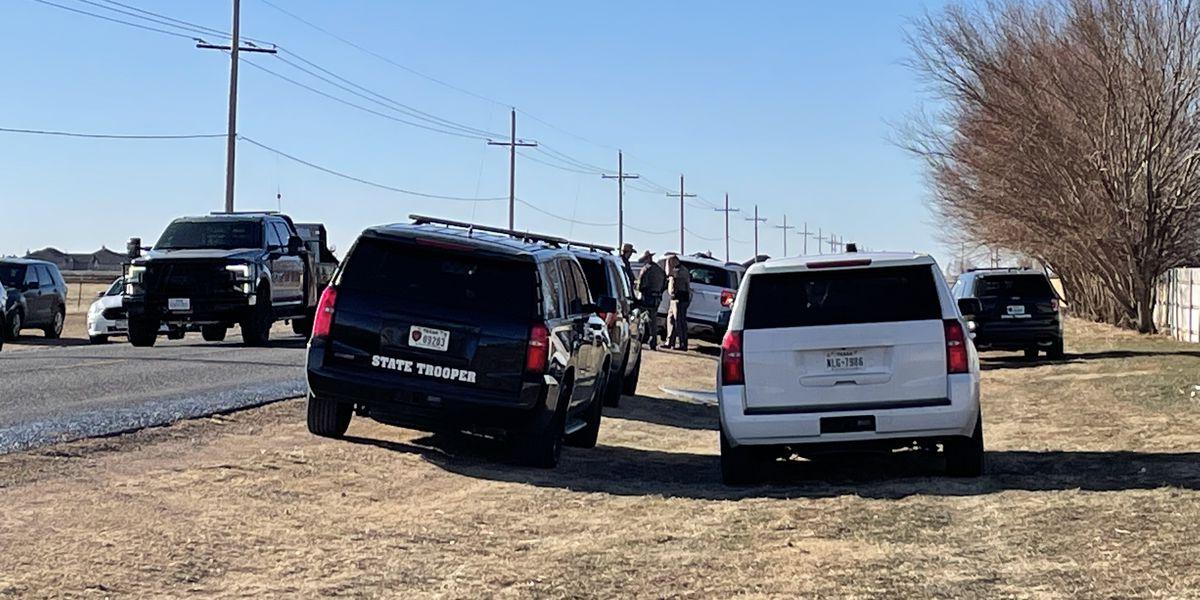 El Departamento de Seguridad Pública ha identificado a una persona quien fue atropellada mientras caminaba en la calle Bushland