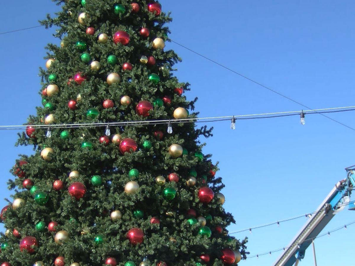 """Granja de calabazas Maxwell's presenta evento de """"Navidad Mágica"""""""