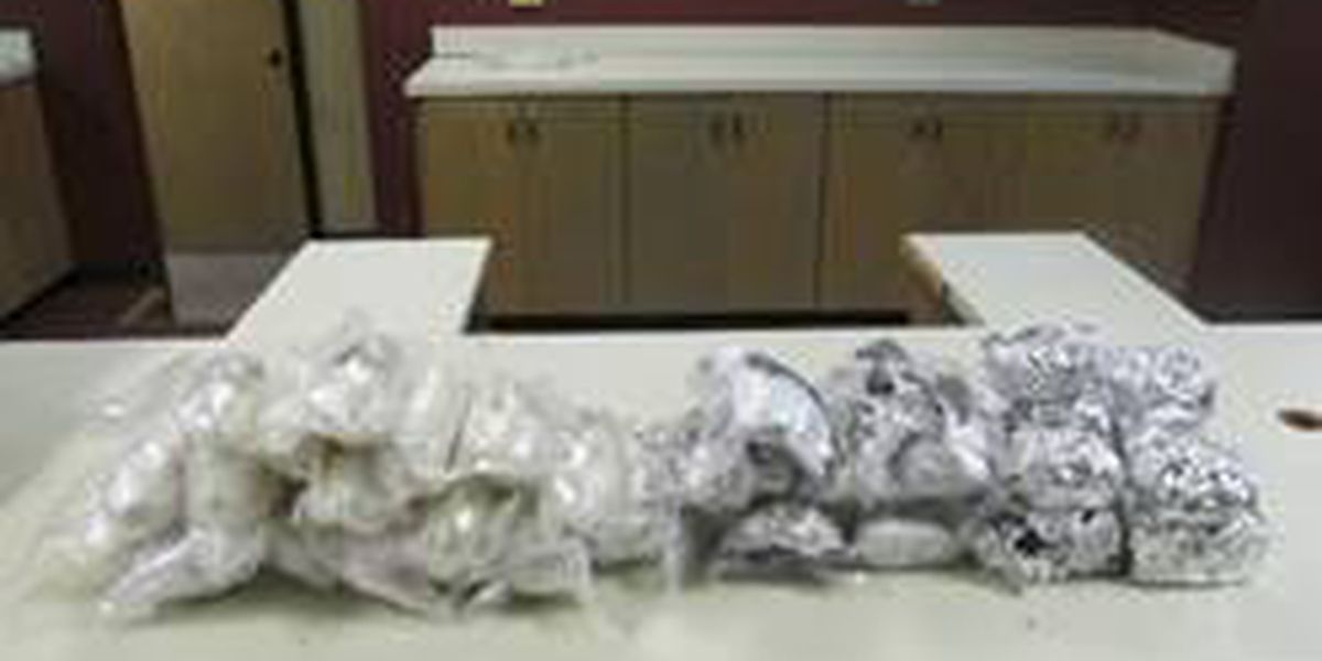 Parada de tráfico conlleva a incautación de drogas en Amarillo